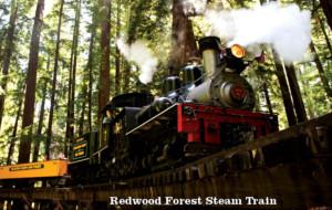 Roaring Camp Holiday Train Ride Overnight
