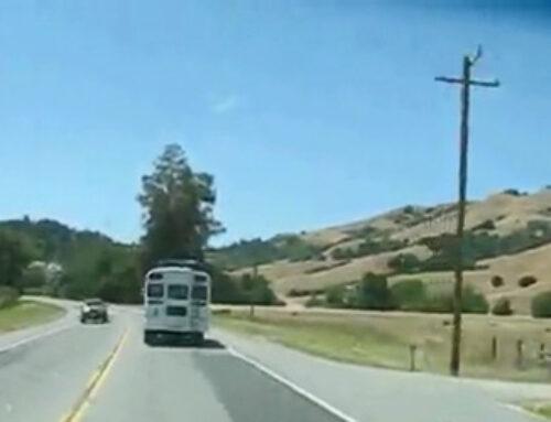 The Magic Bus Video