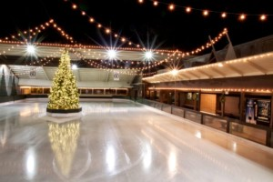 Winter Lodge Ice Skating Day Trip
